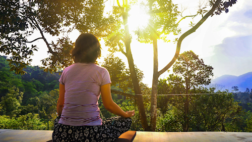 Doorlopende meditatiegroep Bright Dharma - Online Sangha