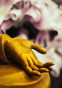 Thema-avond bij Bright Dharma - online mediteren