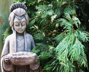 Verdiepingscursus: De Vier Edele Waarheden