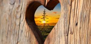 Hulpbronnen voor moeilijke tijden – deel II